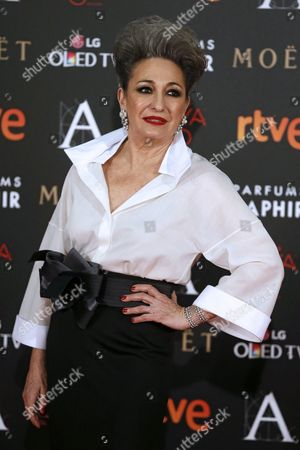 Spanish Actress Luisa Gavasa Arrives For the Goya Awards (the Spanish Royal Cinema Academy Prize) Ceremony at the Felipe Vi Congress Center Marriott Madrid Auditorium Hotel in Madrid Spain 06 February 2016 Gavasa is Nominated in the 'Best Supporting Actress' Category For Her Role in the Film 'La Novia' (the Bride) Spain Madrid