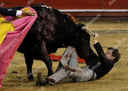 Spanish Bullfighter Julian Lopez Escobar Best Known As El Juli is Charged by a Bull During His Performance in the Bullfight Season of Manizales in Manizales Colombia 10 January 2014 Colombia Manizales