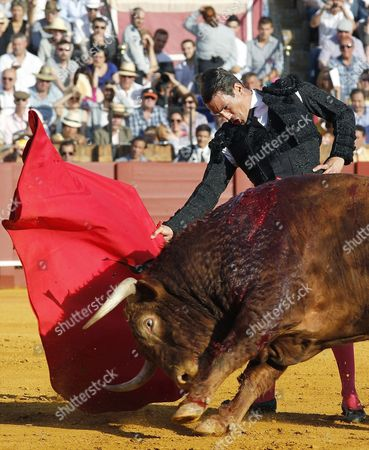 Spanish Bullfighter Jose Mari Manzanares in Action Against His First Bull of the Evening During a Bullfight Held on the Occassion of the April's Fair at La Maestranza Bullring in Seville Southern Spain 21 April 2015 Spain Seville