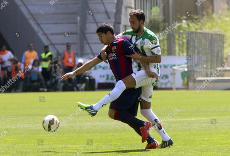 Fc Barcelona's Uruguayan Striker Luis Suarez (l) Fights For the Ball with Deivid Omar Rodriguez (r) of Cordoba During Their Primera Division Soccer Match Played at Nuevo Arcangel Stadium in Cordoba Andalusia Spain on 02 May 2015 Spain Cordoba