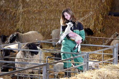 Student Emily Smith with lambs at Sparsholt College, near Winchester