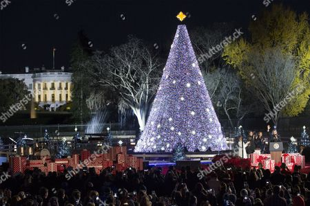The National Christmas Tree is Seen After Being Officially Lit by Us President Barack Obama (r) First Lady Michelle Obama (3-r) Sasha Obama (2-r) and Us Actress and Host Eva Longoria Baston (4-r) on the Ellipse Near the White House (behind) in Washington Dc Usa 01 December 2016 the Lighting of the Tree is an Annual Tradition Attended by the Us President and the First Family President Calvin Coolidge Lit the First National Christmas Tree a 14 6 Meter High Balsam Fir in 1923 United States Washington