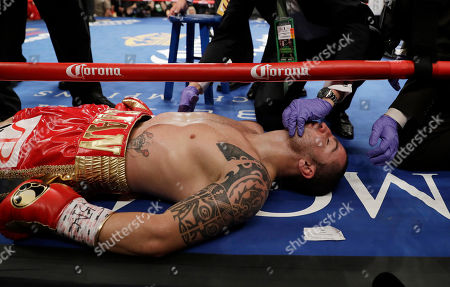 Stock Image of Dejan Zlaticanin, of Montenegro, lies on the mat after he was knocked out by Mikey Garcia during a lightweight title boxing match, in Las Vegas