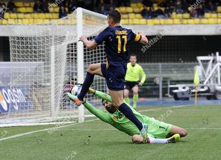 Verona's Bosko Jankovic (top) and Bologna's Gianluca Curci in Action During the Italian Serie a Soccer Match Hellas Verona Fc Vs Bologna Fc at Bentegodi Stadium in Verona Italy 02 March 2014 Italy Verona