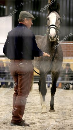 'Horse Whisperer' Monty Roberts of the Us Shows His Skills at the Andrea Kutsch Academy in Bad Saarow Late Saturday 10 March 2007 Andrea Kutsch was the First Student of the Californian Horse Expert Germany Bad Saarow