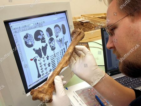 Anthropologist Christian Meyer of the University Mainz Germany Examines an Upper Arm Bone From Remnants Found in the 'Tomb of Eulau' ('grab Von Eulau') in the Statual Museum of Prehistory in Halle Germany Tuesday 17 January 2006 the Biography of the 4 400-years-old Stone Age Man of Eulau Can Be Found in His Teeth Scientists From Mainz Germany the University of Bristol Uk and Halle Germany Examine Four Family Graves with 14 Skeletons of Men Women and Children Found in Summer 2005 in Eulau Germany with the Strontium Isotopy One of the Most Modern Analysis Methods of Archaeology the Scientists Try to Clear if the Stone Age People of Eulau Were Settled There Also Dna Specimen Are Taken Ghana Halle