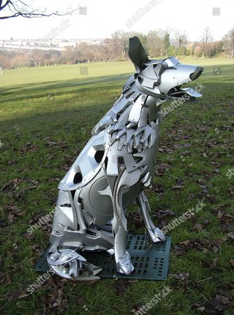 Hubcap dog