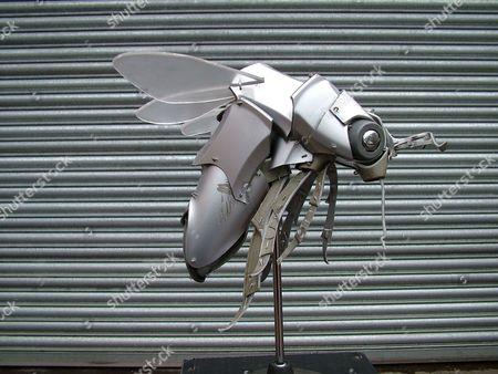 Hubcap bee.