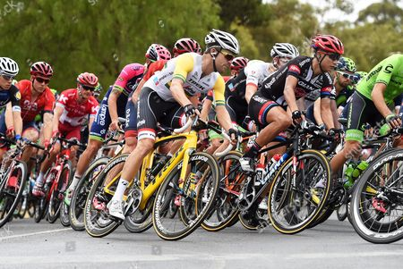 Australian Rider Jack Bobridge (c) of the Trek Segafredo Team in Action During the First Stage of the Tour Down Under Cycling Race in Lyndoch Near Adelaide Australia 19 January 2016 Australia Adelaide