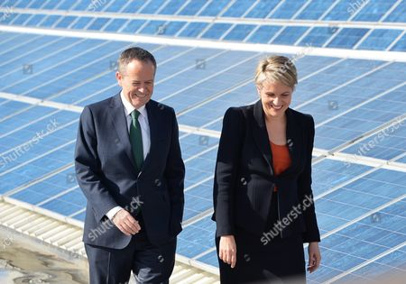 Leader of the Opposition Bill Shorten and Labor Member For Sydney Tanya Plibersek Visit University of New South Wales (nsw) to Look at Solar Panels As Part of the 2016 Election Campaign in Sydney Australia 02 June 2016 Australia Sydney