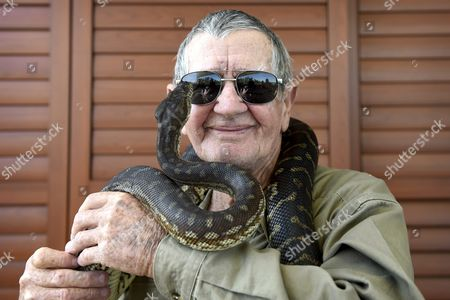 Stock Photo of Australian Environmentalist Bob Irwin Father of the Late Australian Environmentalist and Television Personality Steve Irwin Poses For a Photo with Rosie a Carpet Python at the Launch of His Book the Last Crocodile Hunter in Sydney Australia 25 October 2016 the Last Crocodile Hunter Co-authored with Amanda French Australian Media and Communications Specialist on Wildlife Explores the Relationship Between Father and Son Bob and Steve Irwin and Their Passion For Conservation Australia Sydney