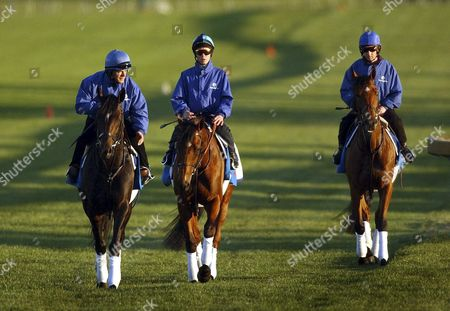 Stock Photo of International Horses From the Godolphin Stabels (l-r) Mark Childs on Mamool Kerrin Mcevoy on Razkalla and John Phelan on Fantastic Love at Sandown Race Track in the Lead Up to the 2004 Melbourne Cup Sunday 31 October 2004 Australia Melbourne