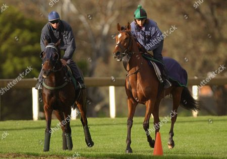 Irish Horses Holy Orders with Jockey David Condon (l) and Jardines Lookout with Sarah Simmons on Board Go Through Their Paces During Early Morning Trackwork at Melbourne's Sandown Racecourse on Sunday 2 November 2003 Australia Melbourne