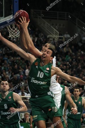 Roco Ukic (front) of Panathinaikos Vies For the Ball with Andrew James Ogilvy (back) of Brose Baskets Bamberg During Their Euroleague Top 16 Basketball Match at the Oaka Indoor Hall in Athens Greece 01 February 2013 Greece Athens