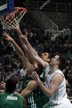 Andrew James Ogilvy (r) of Brose Baskets Bamberg Fights For the Rebound Against Kostas Tsartsaris (2-r) and Mike Bramos (c) of Panathinaikos During Their Euroleague Top 16 Basketball Match at the Oaka Indoor Hall in Athens Greece 01 February 2013 Greece Athens