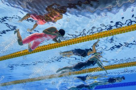 Yulia Efimova of Russia (l-r) Ruta Meilutyte of Lithuania and Taylor Mckeown of Australia Compete During the Women's 100m Breaststroke Semifinal 1 Race of the Rio 2016 Olympic Games Swimming Events at Olympic Aquatics Stadium at the Olympic Park in Rio De Janeiro Brazil 07 August 2016 Brazil Rio De Janeiro