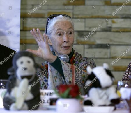 Primatologist Ethologist Anthropologist and Un Peace Ambassador Dame Jane Goodall Speaks During a Press Conference in Mexico City Mexico 27 April 2016 Goodall is in Mexico to Promote Her 'Roots and Shoots' Program Which Encourages Young People to Develop Solutions to Environmental Problems Mexico Mexico City
