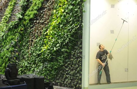 A View of the Vegetal Wall by French Botanist Patrick Blanc at a Shopping Mall in Gdansk Poland 17 March 2009 Vertical Garden is a Way to Grow Plants Without Any Soil While Plants Are Irrigated by Water Mixed with Mineral Salts and Vitamins Poland Gdansk