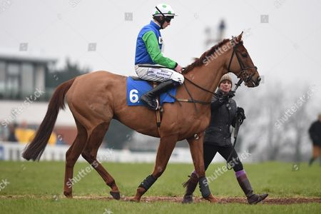 Red Sherlock ridden by Conor O Farrell before RACE 3 - 14:50 Exeter - Pertemps Network Handicap Hurdle (Qualifier) (Class 2) at Exeter Racecourse, Exeter, Somerset, England. - PHOTO: Dean Lancaster/PPAUK