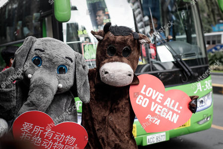 Animal rights advocates from People for the Ethical Treatment of Animals (PETA) dressed as an elephant and a cow hold placards during a demonstration in Makati City, south of Manila, Philippines, 13 February 2017. Members of PETA encouraged the public to show compassion to all living things as Valentine's day approaches. Wearing different animal costumes, the animal rights advocates carried signs in various languages and went around the business district of Makati dancing and giving hugs.