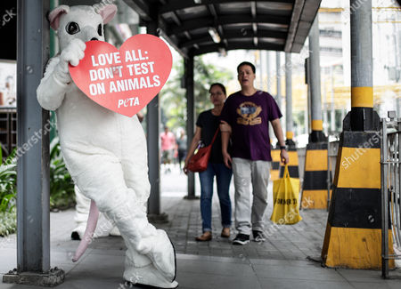An animal rights advocate from People for the Ethical Treatment of Animals (PETA) dressed as a rat holds a placard during a demonstration in Makati City, south of Manila, Philippines, 13 February 2017. Members of PETA encouraged the public to show compassion to all living things as Valentine's day approaches. Wearing different animal costumes, the animal rights advocates carried signs in various languages and went around the business district of Makati dancing and giving hugs.