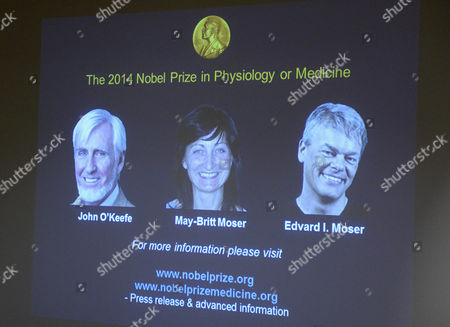 A Screen Displays Pictures of John O'keefe May-britt Moser and Edvard Moser During the Announcement of the Nobel Prize in Medicine Winners in Stockholm Sweden 06 October 2014 Us-british Scientist John O'keefe and Norwegian Husband and Wife Edvard Moser and May-britt Moser Have Won the Nobel Prize in Medicine For Discoveries of Cells That Constitute a Positioning System in the Brain Sweden Stockholm