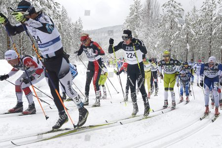 Dario Cologna of Switzerland (224) in Action During the Cross Country Ski Competition Vasaloppet in Sweden on Sunday March 6 2016 the Vasalopp Race is 90 Km Long and Runs Between Salen and Mora in Sweden Sweden Salen-mora
