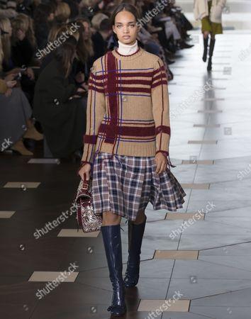 Stock Image of Ellen Rosa on the catwalk