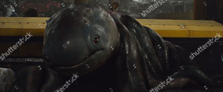 Stock Picture of The creature