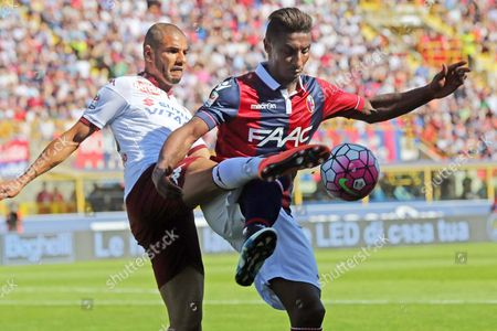 Bologna's Midfielder Kevin Constant (r) in Action Against Torino's Defender Bruno Peres (l) During the Italian Serie a Soccer Match Between Bologna Fc and Torino Fc at Dall'ara Stadium in Bologna Italy 16 April 2016 Italy Bologna