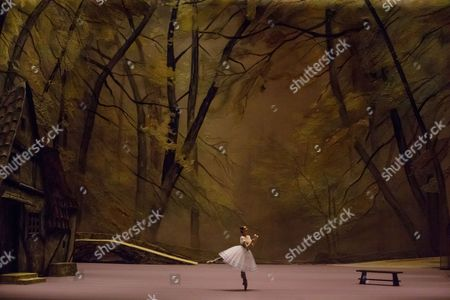 Editorial picture of Rehearsal of ballet Giselle by Vladimir Vasiliev in Bolshoi (Big) Theatre in Moscow, Russian Federation - 17 Feb 2017