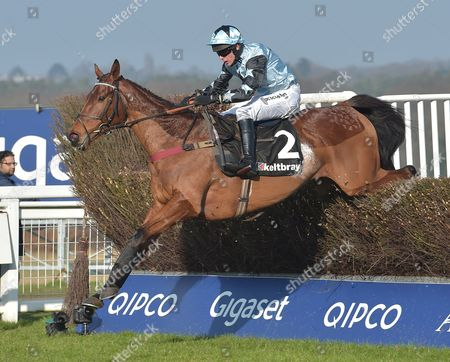Stock Image of Tenor Nivernais (Liam Treadwell) takes the last before going on to win The Keltbray Swinley Chase at Ascot Racecourse on Saturday 18th February 2017.
