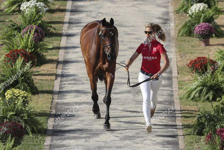 Rebecca Howard From Cananda Leads Her Horse Riddle Master on the Runaway During the Horse Inspection For the Eventing Competition of the Rio 2016 Olympic Games Equestrian Events at the Olympic Equestrian Centre in Rio De Janeiro Brazil 05 August 2016 Brazil Rio De Janeiro