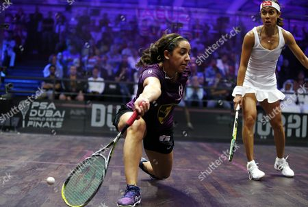 Raneem El-welily (l) of Egypt in Action Against Nicol David of Malaysia During Their Women's Singles Semi Final Match at the Professional Squash Association (psa) World Series Finals in Dubai United Arab Emirates 27 May 2016 United Arab Emirates Dubai
