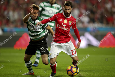 Benfica's Player Rafa (r) Vies For the Ball with Sporting?s Joao Pereira During the Portuguese First League Soccer Match Between Benfica Lisbon and Sporting Cp at Luz Stadium in Lisbon Portugal 11 December 2016 Portugal Lisbon