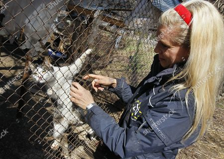 Princess Maja Von Hohenzollern (r) Ambassador and Spokeswoman For the European Animal and Nature Protection Group (etn) Plays with a Cat During Her Visit to the 'Sirius' Animal Protection Shelter in Tolokun Village Some 80 Km From Kiev Ukraine 11 April 2012 Maja Von Hohenzollern Arrived in Ukraine to Deliver Two Field Kitchens to a Local Animal Protection Shelter and to Draw Attention to an Allegedly Ongoing Government Programme to Destroy Stray Dogs in Connection with the Euro 2012 Football Championship Ukraine Kiev