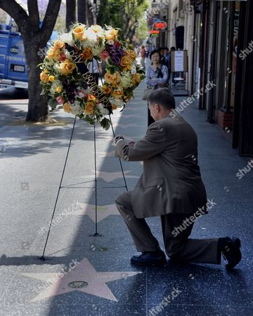 President and Ceo of the Hollywood Chamber of Commerce Leron Gubler Places a Card on the the Wreath That Adorns the Star of Us Writer Ray Bradbury on the Hollywood Walk of Fame in Hollywood California Usa 06 June 2012 Bradbury Died Last Night at the Age of 91 United States Hollywood