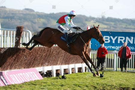 Jockey Pj Brennan Riding Tricky Trickster Jumps the Last Fence at Cheltenham United Kingdom Cheltenham