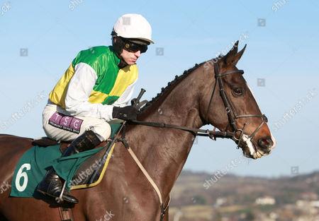 Jockey Pj Brennan Riding Battlecry United Kingdom Cheltenham
