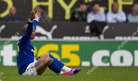 Cardiff City Striker Robert Earnshaw Appeals For A Penalty United Kingdom Cardiff