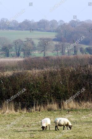 Sissinghurst Castle grounds, Kent, England, Britain
