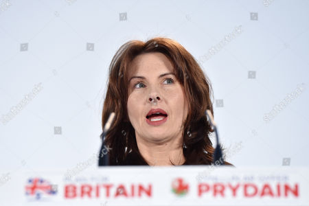 Stock Image of Trudy Harrison, MP for Copeland