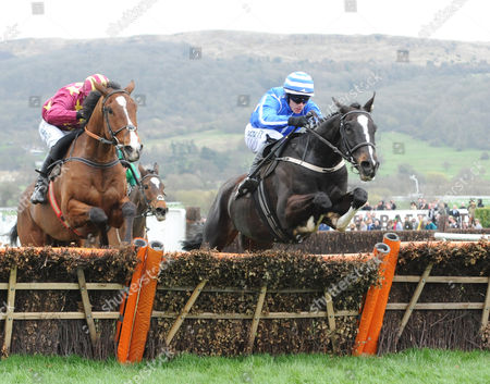 Stock Photo of Cheltenham Racecourse. Festival Day 4 The Albert Bartlett Novices' Hurdle Race. Pencil (right) ridden by Pau Townend clears the final hurdle to win from Monalee ridden by David Mullins.