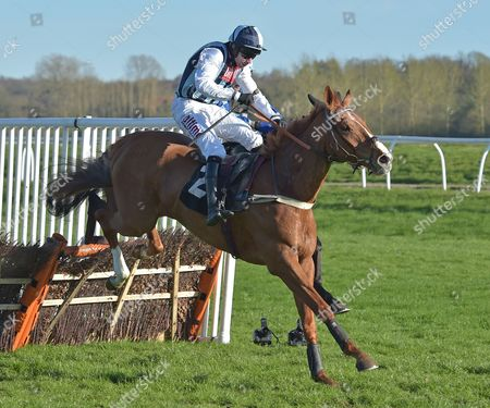 Stock Image of Sir Anthony Browne (Wayne Hutchinson) takes the last before going on to win The John Haine Memorial Novices? Hurdle Race at Newbury Racecourse on Saturday 25th March 2017.