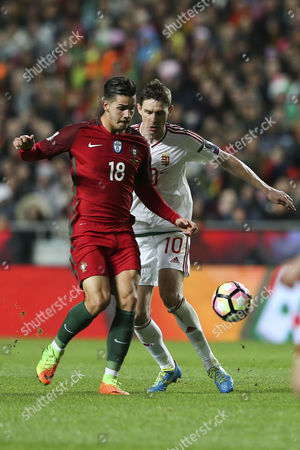 Stock Picture of Portugal's player Andre Silva (L) fights for the ball with Hungary's player Zoltan Gera (R) during the 2018 FIFA World Cup Russia group B qualifying soccer match Portugal vs Hungary at Luz Stadium in Lisbon, Portugal, 25 March 2017.