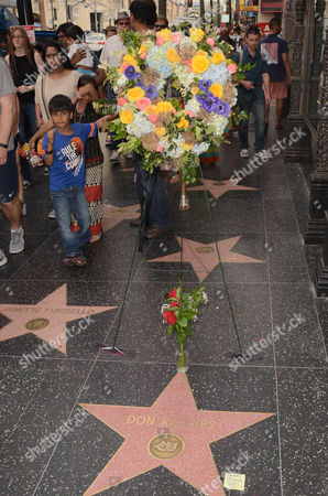 Editorial image of Tributes left on Don Rickles' star on Hollywood Walk of Fame, Los Angeles, USA - 06 Apr 2017