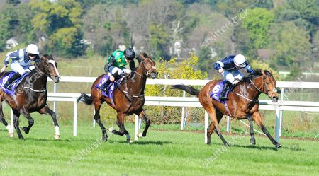 LEOPARDSTOWN. REKINDLING and Wayne Lordan (right) win the Group 3 P.W. McGrath Memorial Ballysax Stakes from Douglas Macarthur (centre) and Yucatan (left). HEALY RACING