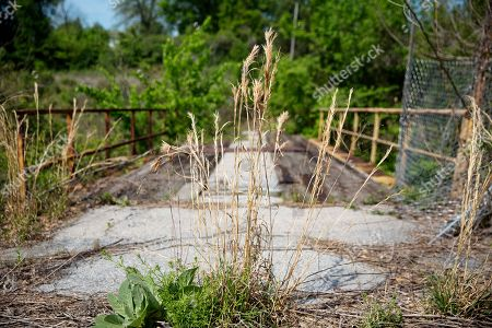 Weeds grow along a section of Proctor Creek that flows through an old welding plant in Atlanta, . Growing up, Mark Teixeira loved playing at a park near his home. Now, he's trying to bring those same opportunities to an impoverished area in his second home. Hopefully the retired baseball star will lead others to become eco-athletes, lending their considerable influence and financial power to one of the world's most pressing issues: preserving the environment