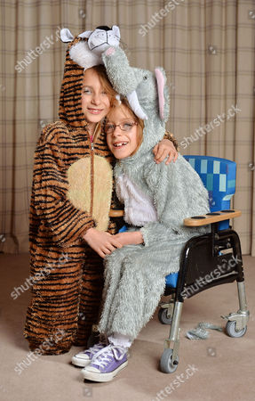 Stock Picture of Seven Year Old Disabled Girl Rebecca Carey (glasses) Pictured With Her Twin Sister Charlotte At Their Home In Congleton Cheshire Dressed As An Elephant And Tiger. Rebecca Needs Selective Dorsal Rhizotomy (sdr) Surgery In The Usa To Walk Again And Is Appealing To Dm Readers For Help.