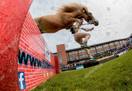 Daniel Kennedy with Flash clears the wall in an exhibition of jumping by falabella horses at Fairyhouse today